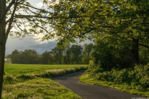 Landschaft Massenheim