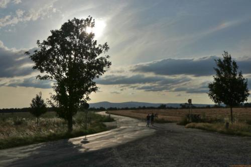 Straße nach Berkersheim